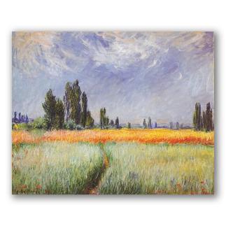Campo de Trigo - Monet